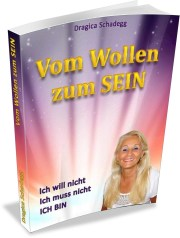 Buch Cover VomWollenZumSein