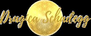 Logo Dragica Trans 300